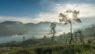Tea Trails Sri Lanka