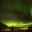 Deplar Farm Green lights